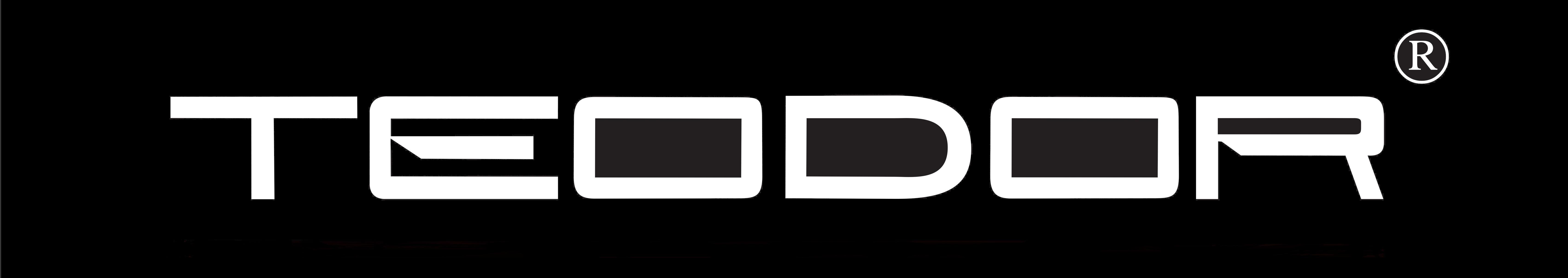 TEODOR_logo